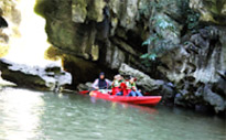 Cave Temple and Mangrove Kayaking Day Trip