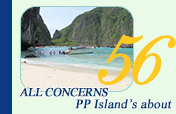 All Concerns PP Island's About