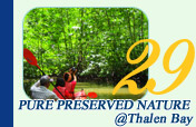 Pure Reserved Nature at Thalen Bay