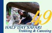 Half Day Safari Trekking and Canoeing