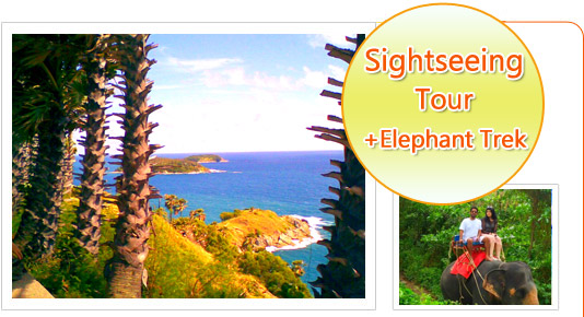 Phuket Sightseeing Tour and Elephant Trekking