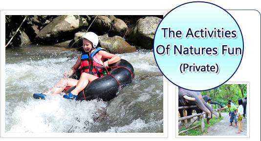 The Activities of Natures Fun